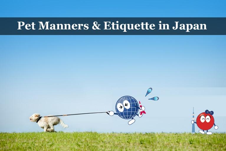 Pet Manners & Etiquette in Japan - Dog Walking, etc  - PLAZA