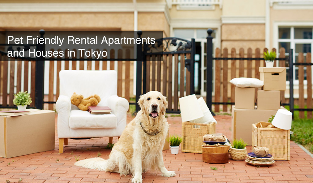 Wondrous Pet Friendly Rental Apartments And Houses In Tokyo Plaza Homes Complete Home Design Collection Barbaintelli Responsecom